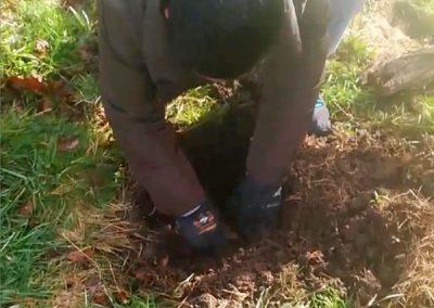 Desenterrando a Deva